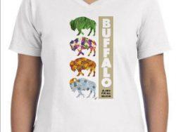 Four Season of Buffalo